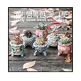 모모15/행복한꽃그릇 