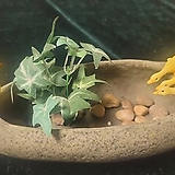 가든데코( 오리연못)|