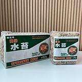천연 압축 수태 칠레산 물이끼 코케다마 토피어리 난재배용 