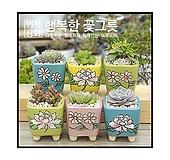 [가을국]다육화분/인테리어화분/다육이화분/행복상회/행복한꽃그릇|Handmade Flower pot