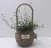 트리안 (소) 핸들 바구니 *쟈스민 식물*|