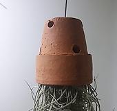 토분수염 (소) *쟈스민 식물*|
