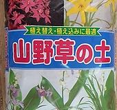 산야초 대포장|