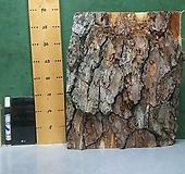 나무껍질(풍란,틸란드시아...원예자재용 수피)xp-4760|