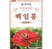 백일홍 꽃씨앗 [150립]|