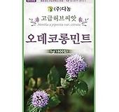 오데코롱민트(자홍색) 허브씨앗 [1g]|