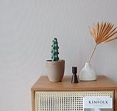 [고호] 용비선인장 이태리 팽이토분 Myrtillocactus geometrizans cv. fukurokuryuzinboku