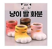 냥발팟 고양이발 화분 미니 소형 작은 도자기 인테리어 미니멀|